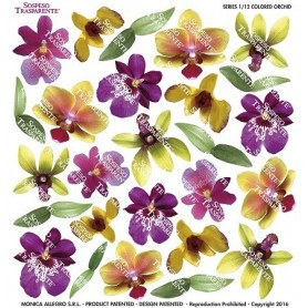 Pellicola stampata col. orchid