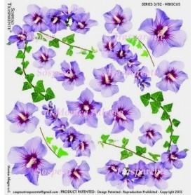 Pellicola stampata hibiscus