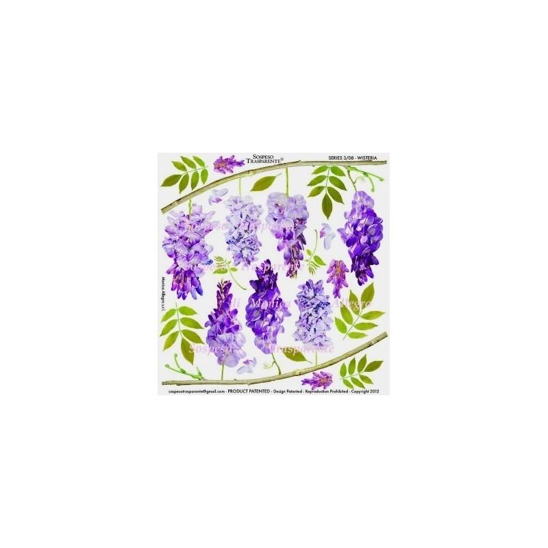 Pellicola stampata wisteria