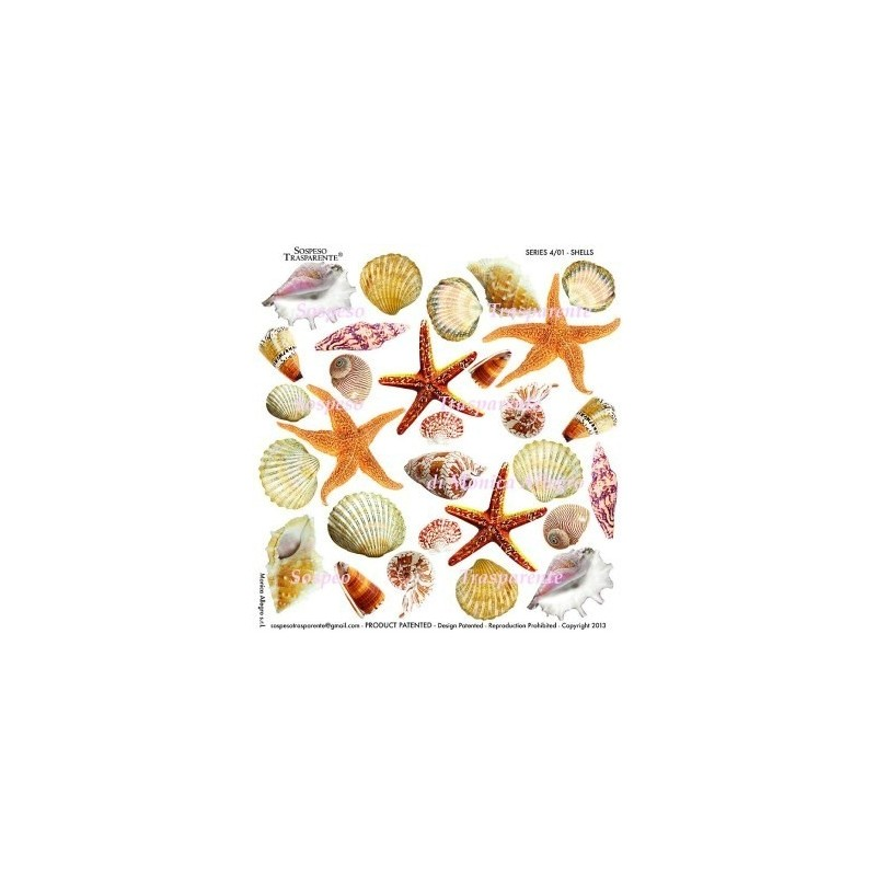 Pellicola stampata shells