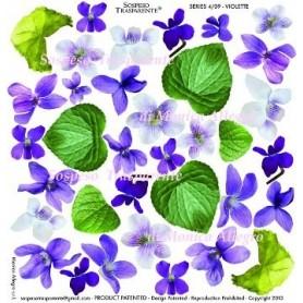 Pellicola stampata violette