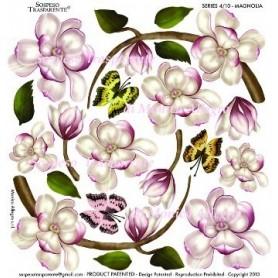 Pellicola stampata magnolia 3
