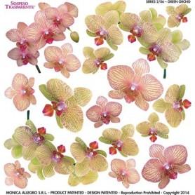 Pellicola stampata green orchis