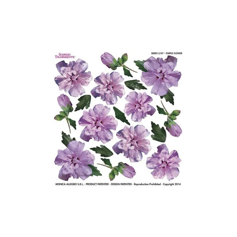 Pellicola stampata purple flower