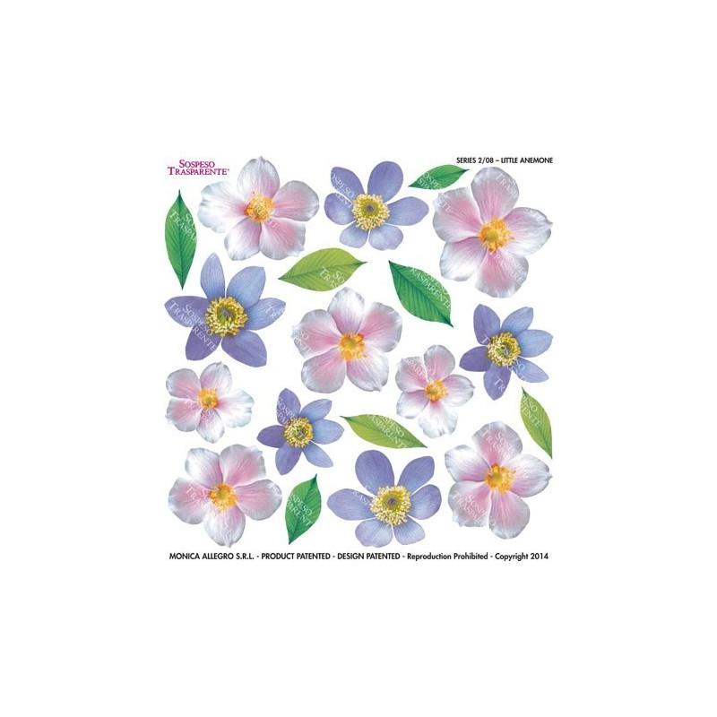 Pellicola stampata little anemone
