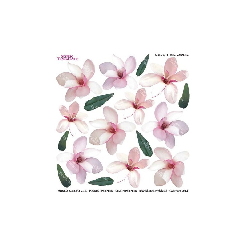 Pellicola stampata rose magnolia