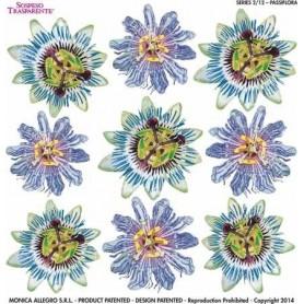 Pellicola stampata passiflora