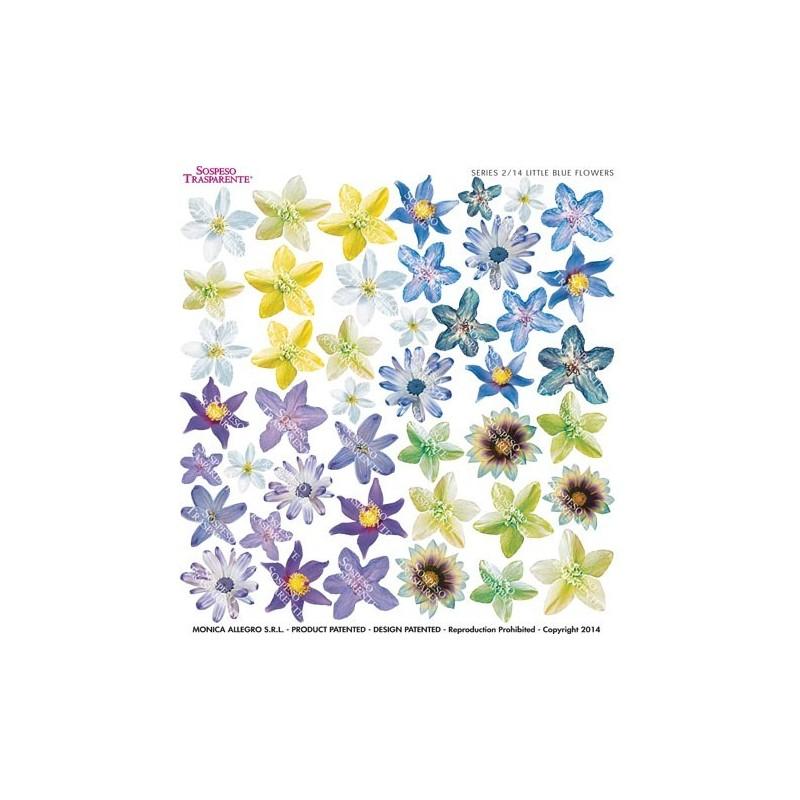 Pellicola stampata little blue flower